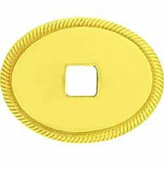 Picture of Backplate - Plain Oval Convex