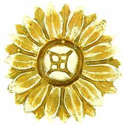Picture of Patera - Daisy Head - Petal